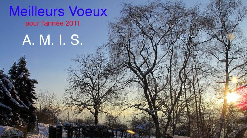 Voeux2011(2)